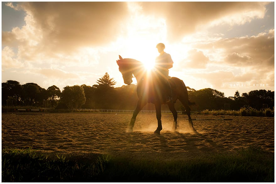 Backlit horse and rider at sunset in Centennial Park