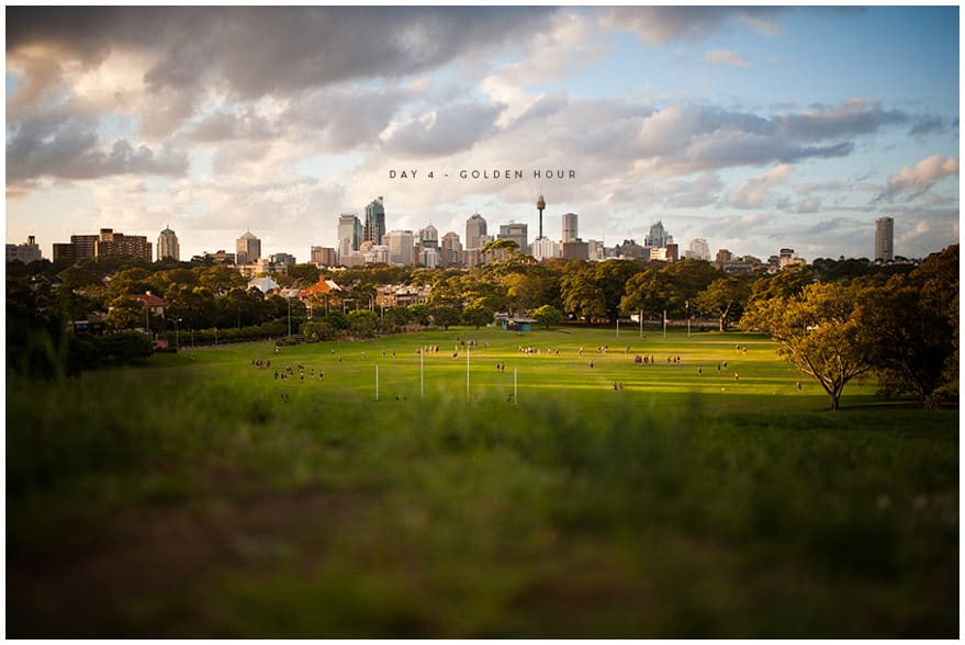 Centennial Park with Sydney city in background at dusk