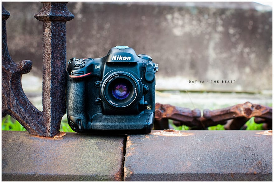 Nikon D4 sitting in grave yard